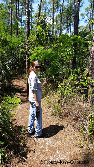 Hiking in the Everglades for South Florida hiking trails