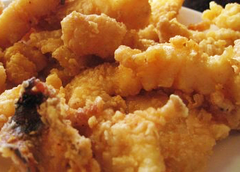 fried conch