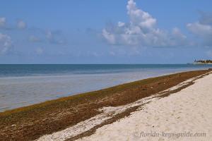 Coco Plum Beach for Marathon Beaches