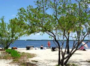 John Pennekamp State Park for Key Largo Beaches
