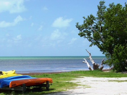 Long key state park florida keys guide kayak image at long key state park sciox Choice Image