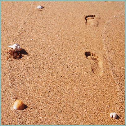 footprints image for Florida Keys Camping